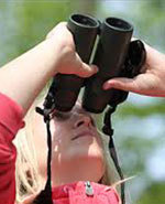 Icon of the event Birding 101: Tips for Bird Watching in Toronto