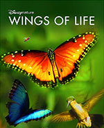 Icon of the event Family Movie: Wings of Life