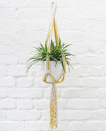 Icon of the event DIY Macramé Plant Hanger Workshop
