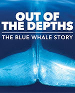 Icon of the event Out of the Depths: Blue Whales Research at the ROM