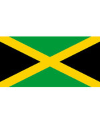 Icon of the event Miss Jamaica: Film Screening with Director Q&A - David Dacosta