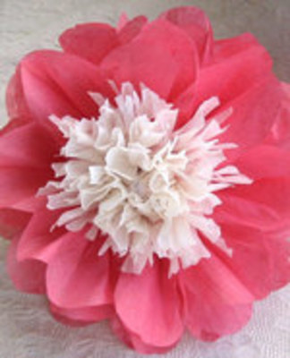 Icon of the event Tissue Paper Flowers