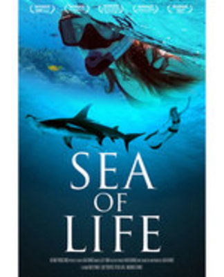 Icon of the event Sea of Life Documentary with Filmmaker Julia Barnes